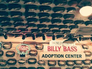 donate a billy bass and get a free meal!